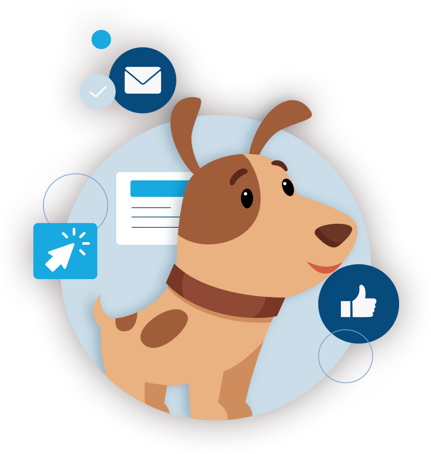 About Top Dog Domain Management